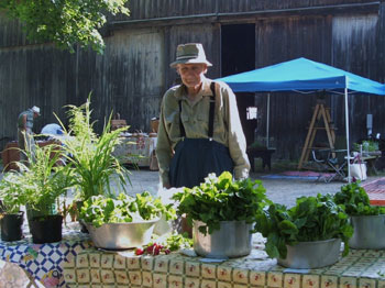Vegetable vendor at The Dudley Farm Farmers' Market