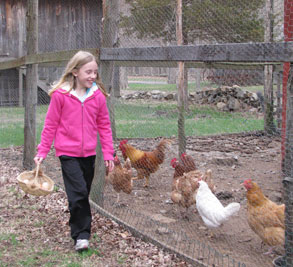 Girl with eggs in basket with chickens