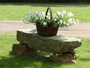 White petunias in basket on stone bench