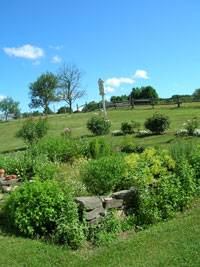 The Dudley Farm Herb Garden and hillside